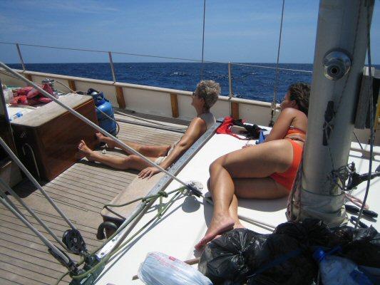 Caraibien 2006 315