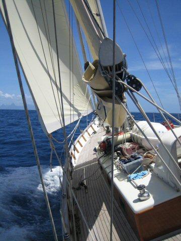 Caraibien 2006 316