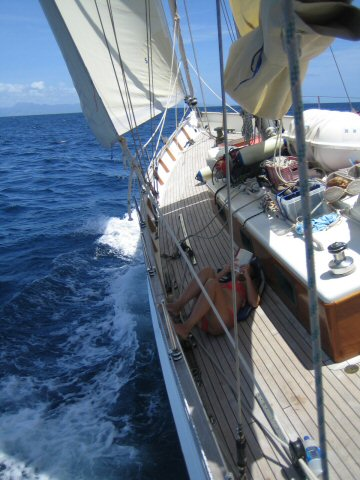 Caraibien 2006 319