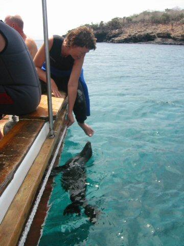 Galapagos Dykning 2006 026