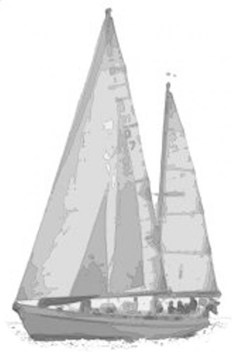 Roselina-uden-himmel-og-hav-kontur